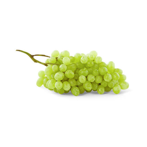 Picture of Signature Farms Green Seedless Grapes